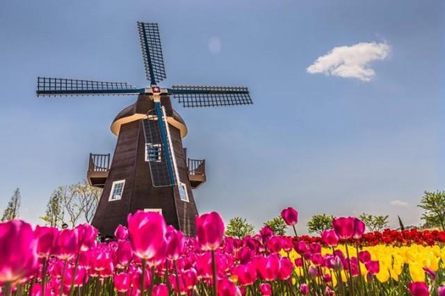 Holanda (Foto: Divulgação)