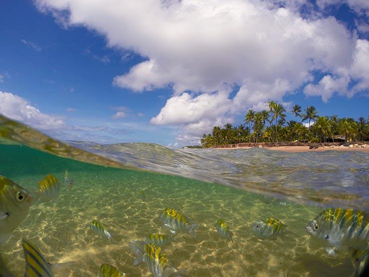 10 Melhores Praias do Brasil -  Praia de Taipu de Fora na Bahia